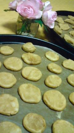 これからクッキー焼きま〜す